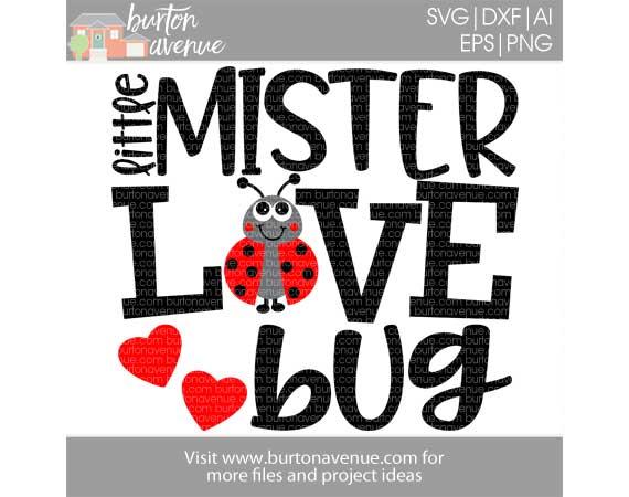 Little Mister Love Bug